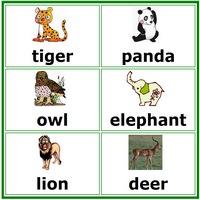 Животные на английском в картинках